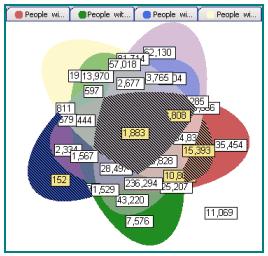 Venn Diagram Segmentation